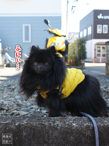 20140123_真熊散歩3