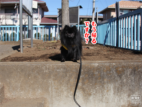 20140123_真熊散歩9