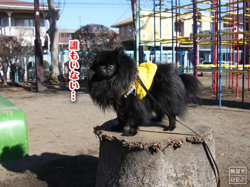 20140123_真熊散歩7