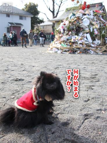 20140125_どんど焼き2