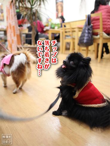 20140129_カフェ真熊4