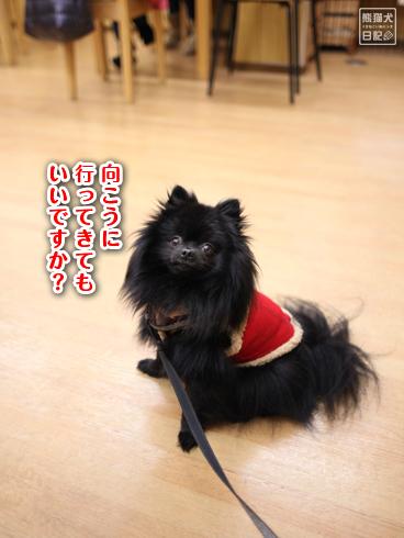20140129_カフェ真熊2