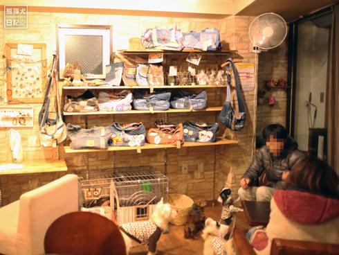 20140130_新たなドッグカフェへ6