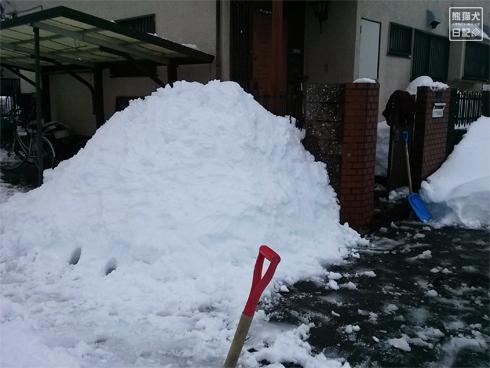 20140216_大雪被害7