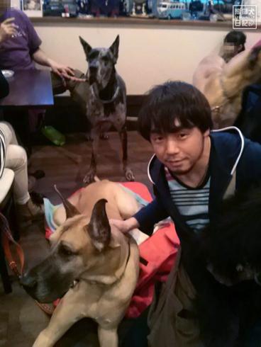 20140502_ドッグカフェと大型犬3