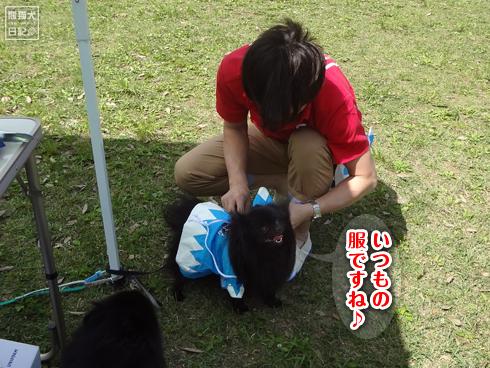 20140522_真熊一族9