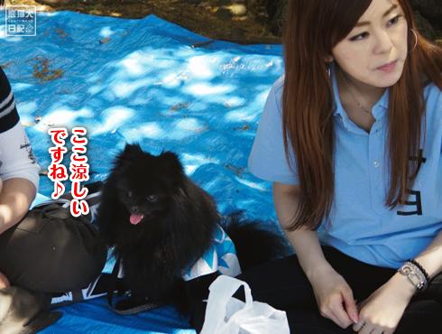 20140531_志熊ノックアウト5