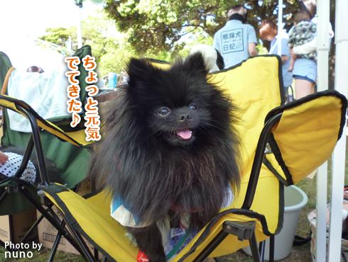 20140531_志熊ノックアウト13