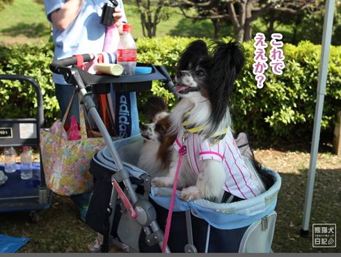 20140607_大阪からの使者9
