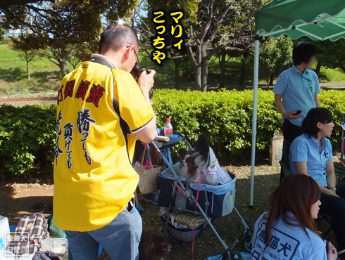 20140607_大阪からの使者8
