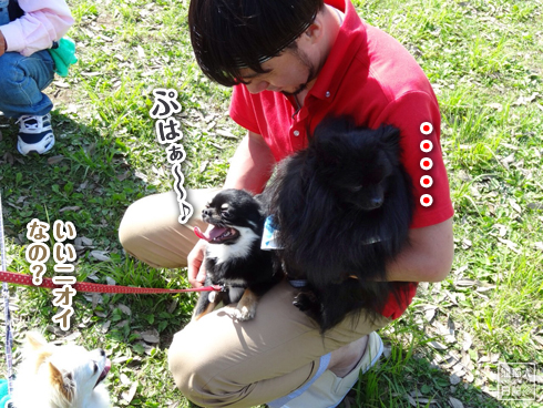 20140611_真熊VS菩提2