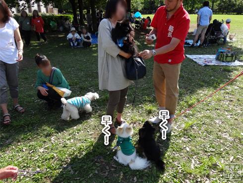 20140611_真熊VS菩提6