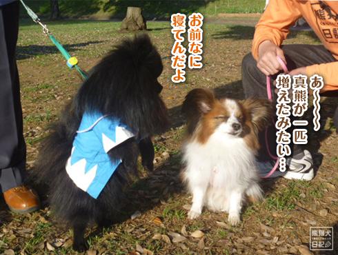 20140612_志熊3