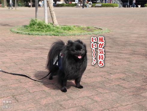 20140619_岸根公園4