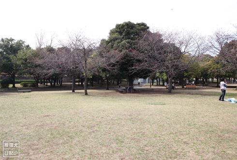 20140619_岸根公園10