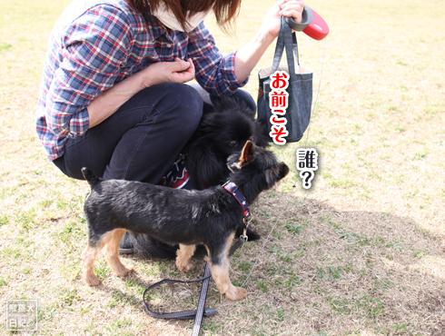 20140619_岸根公園8