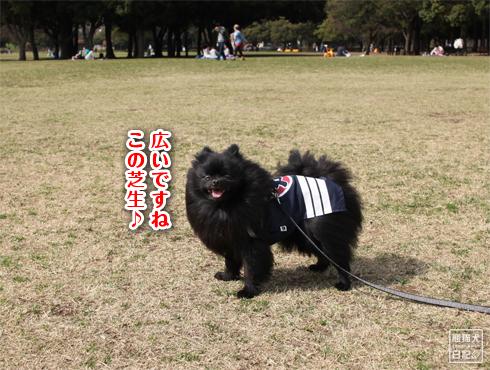 20140619_岸根公園7