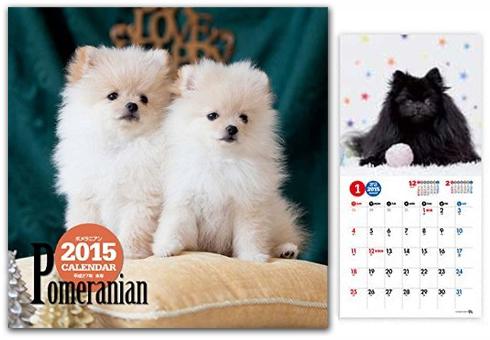 20140621_カレンダー