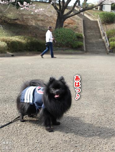 20140621_岸根公園4