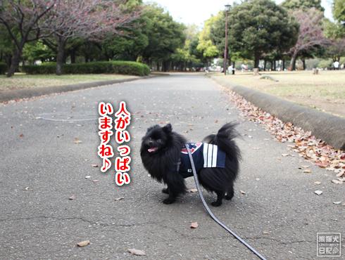 20140621_岸根公園2