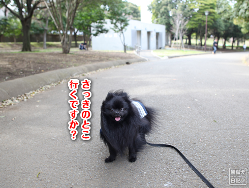 20140621_岸根公園1