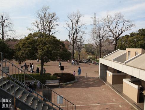20140621_岸根公園8