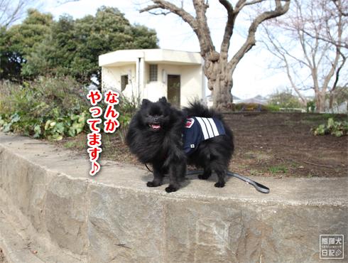 20140621_岸根公園7