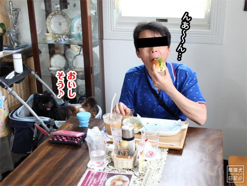 20140630_アクシデント三昧16