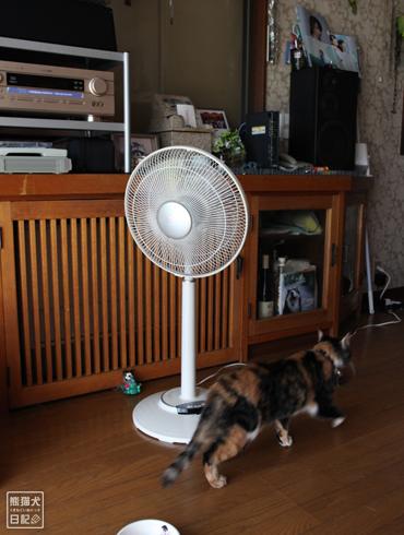 20140802_暑さ対策3