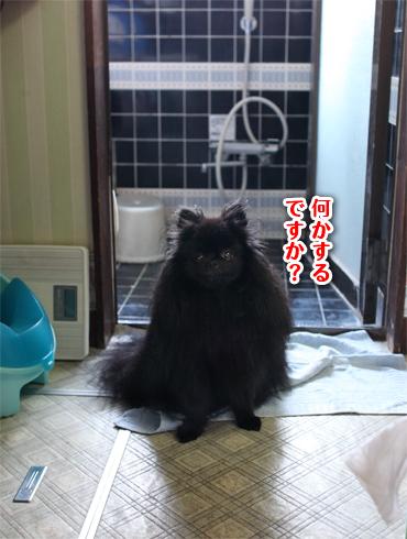 20140803_お風呂2
