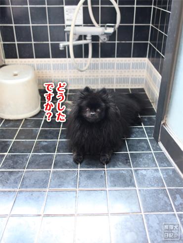 20140803_お風呂1