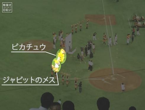 20140810_プロ野球観戦12