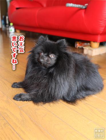20140810_台風1