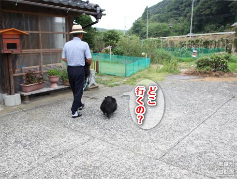 20140815_千葉の両親宅5