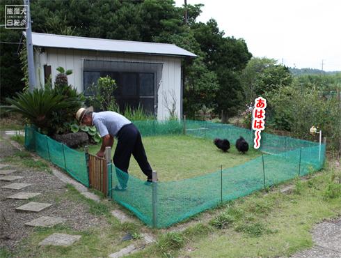 20140815_千葉の両親宅7