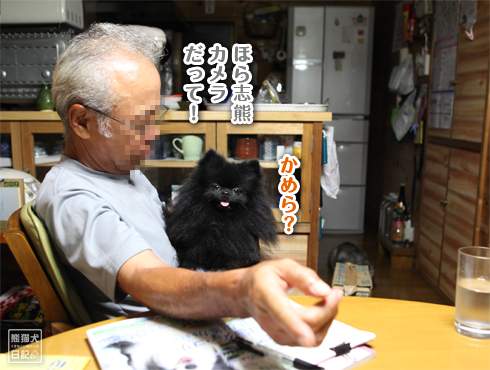 20140817_猫にマタタビ8