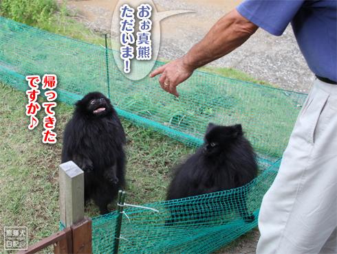 20140820_ほぼ熊4