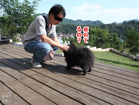 20140924_秋晴れドッグラン3