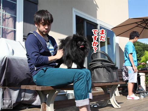 20140924_秋晴れドッグラン7