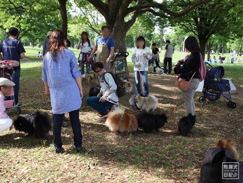 20150613_再び鶴見緑地へ9