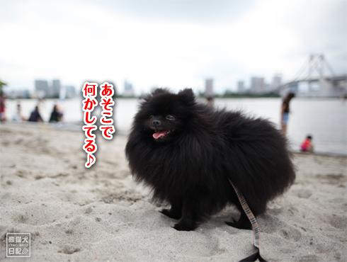 20150629_お台場10