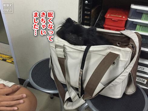 20150805_山田屋12