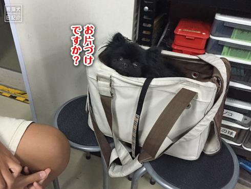 20150805_山田屋11