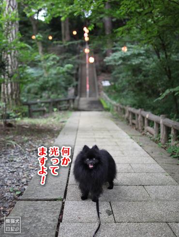 20150827_公園探訪7