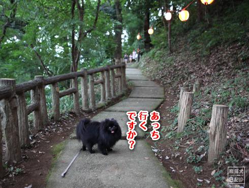 20150827_公園探訪9