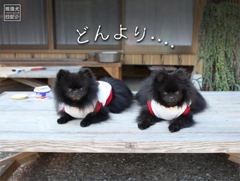 20151001_おそろいの服3