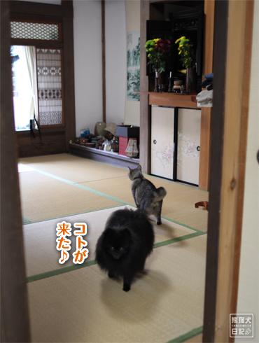 20151004_志熊と親父6