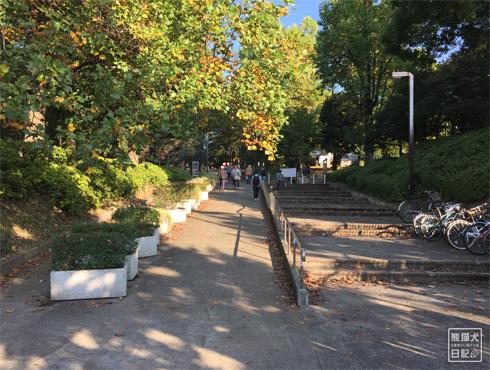 20151021_代々木公園4