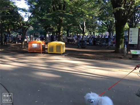 20151021_代々木公園10