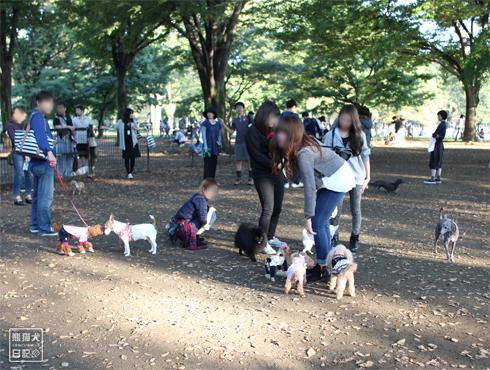 20151021_代々木公園12